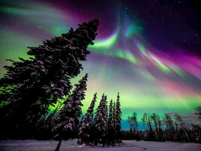 سوئد در زمستان