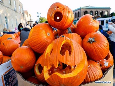 جشنواره کدو تنبل در لودویگسبورگ (Pumpkin Festival)
